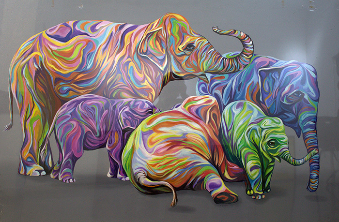 VG-Rana-5-Elephants